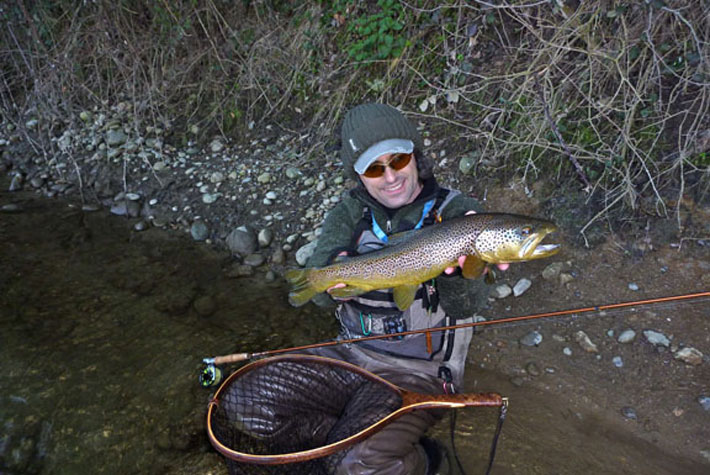 cavaille brown trout